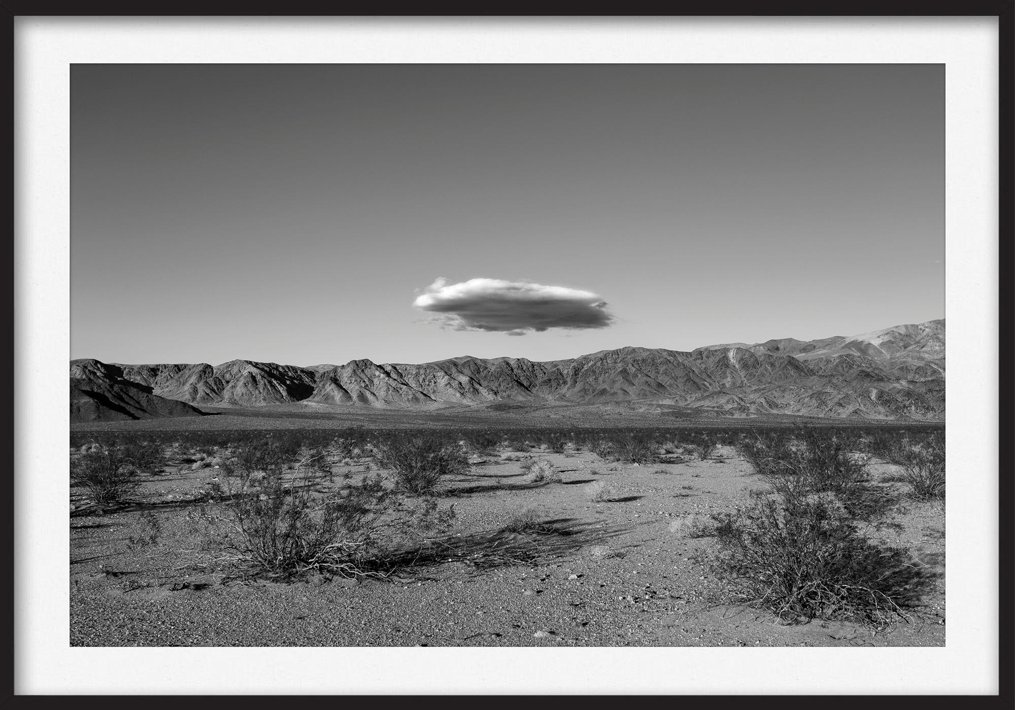 Thomas Illemann arkitekturfotografi photography landscape landskab california black white sort hvid